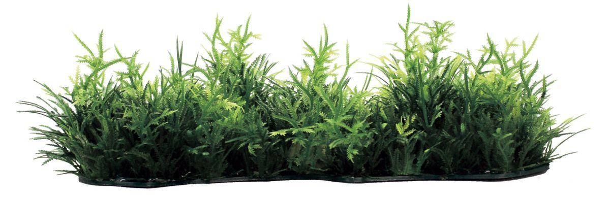 Композиция из растений для аквариума ArtUniq Коврик из мха, 23 x 8 x 4 см0120710Композиция из растений для аквариума ArtUniq Коврик из мха, 23 x 8 x 4 см