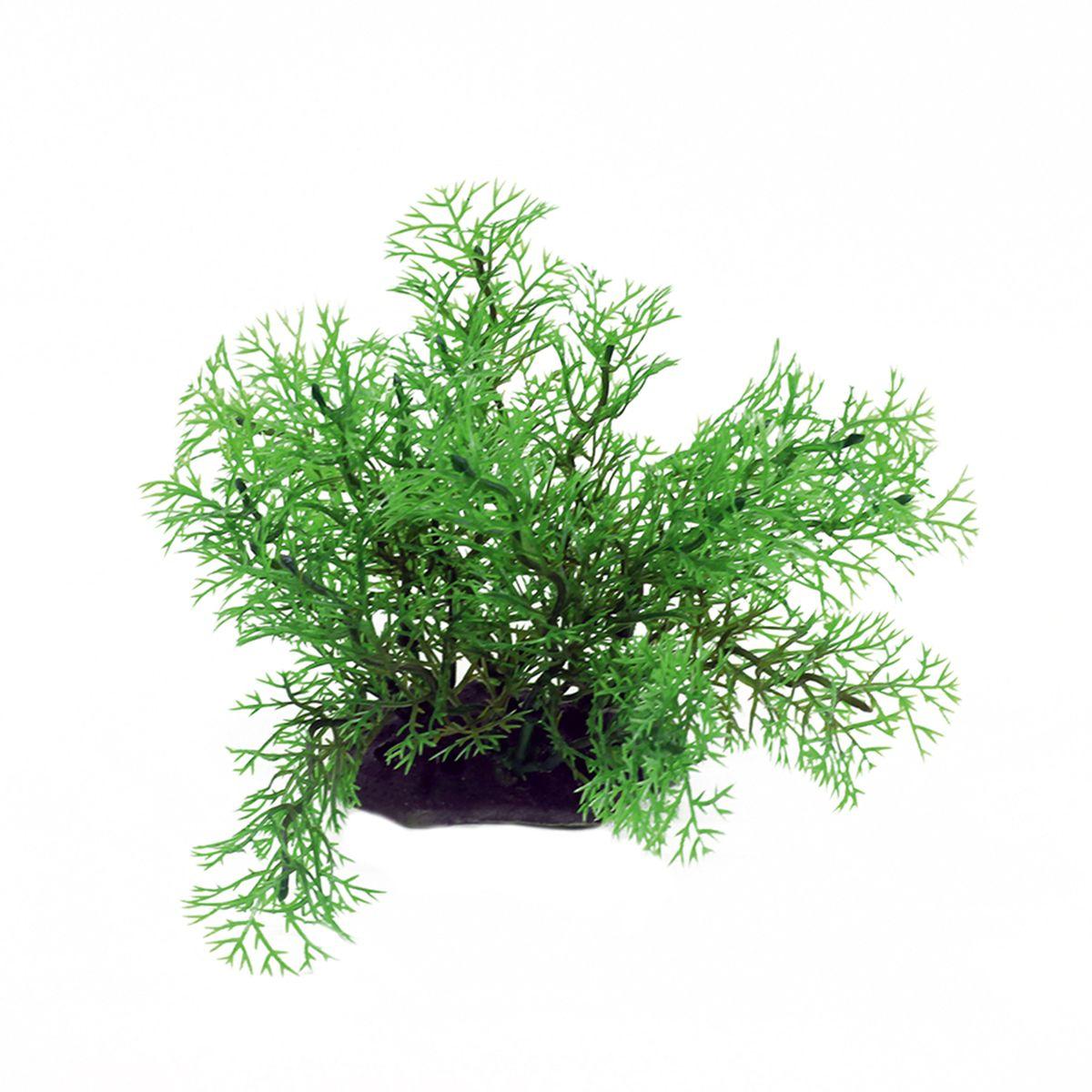 Растение для аквариума ArtUniq Перистолистник, высота 10-12 см0120710Растение для аквариума ArtUniq Перистолистник, высота 10-12 см