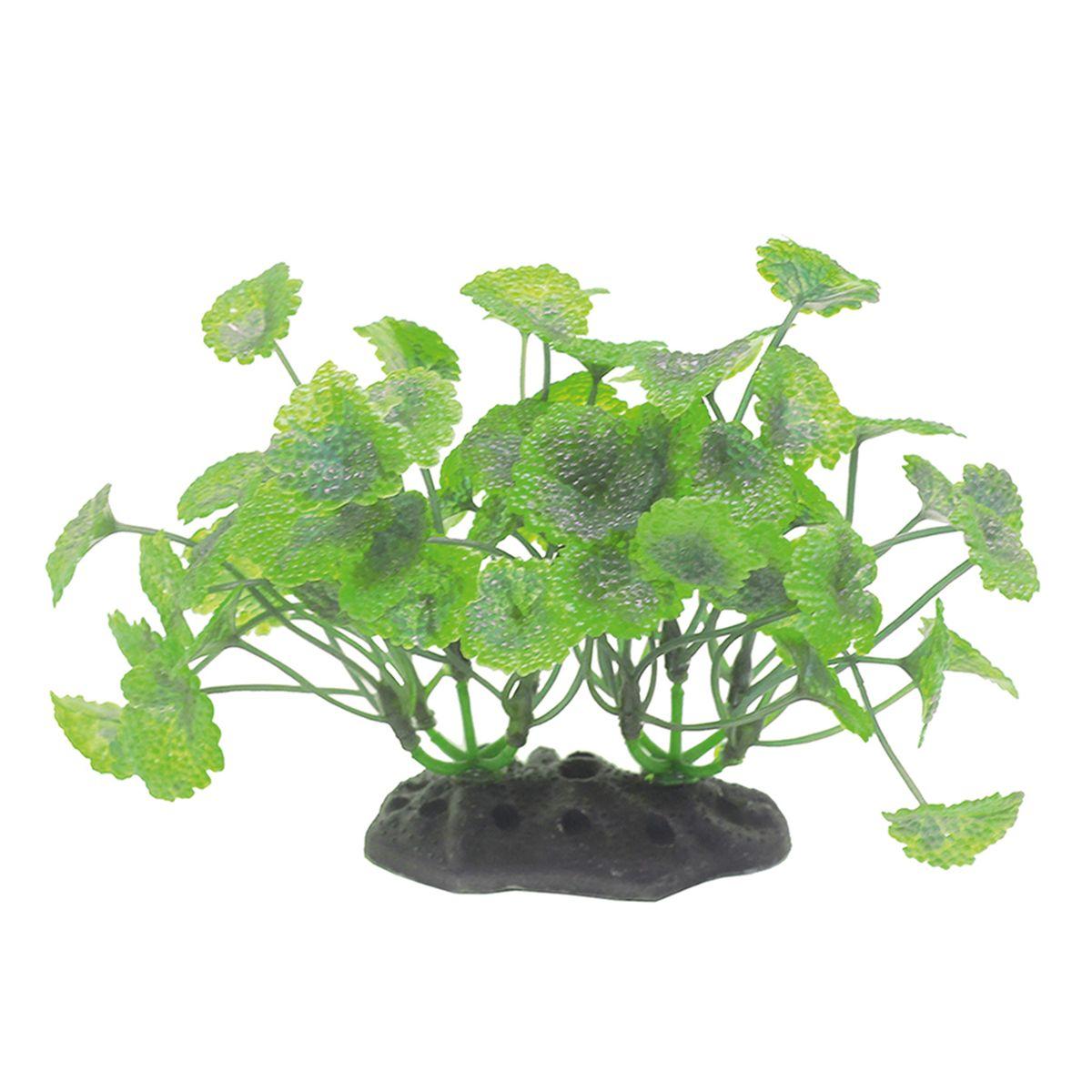 Растение для аквариума ArtUniq Щитолистник, высота 10-12 см0120710Композиция из искусственных растений ArtUniq превосходно украсит и оживит аквариум.Растения - это важная часть любой композиции, они помогут вдохнуть жизнь в ландшафт любого аквариума или террариума. А их сходствос природными порадует даже самых взыскательных ценителей.
