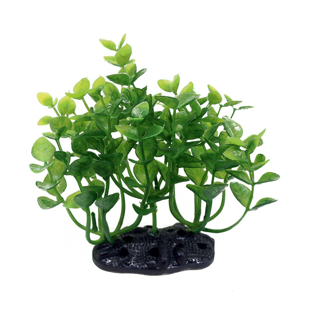 Растение для аквариума ArtUniq Бакопа монье, высота 10-12 см0120710Растение для аквариума ArtUniq Бакопа монье, высота 10-12 см