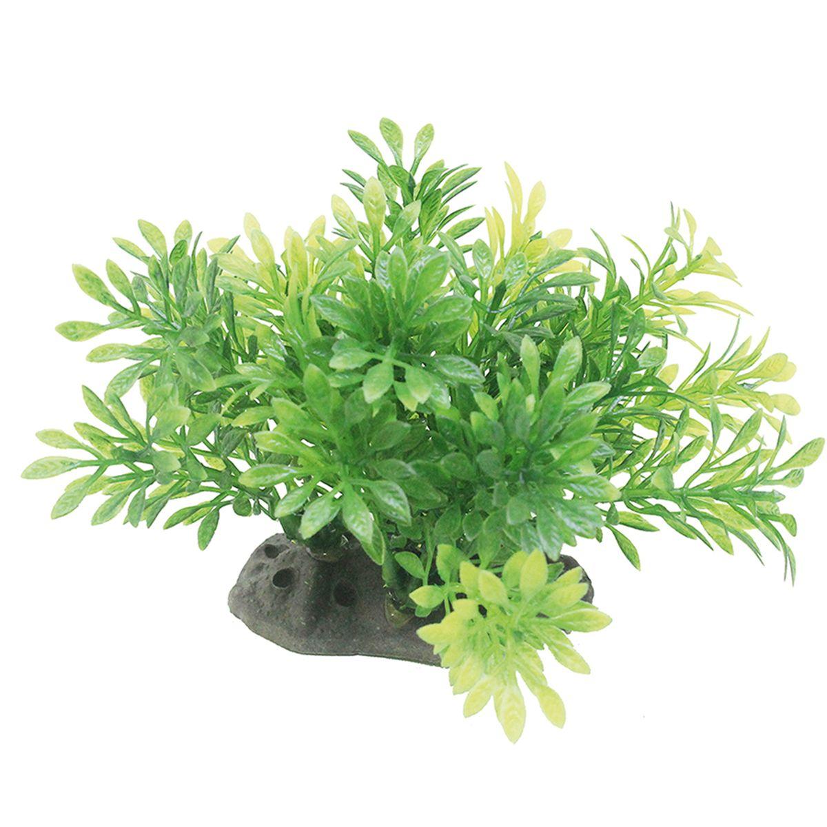 Растение для аквариума ArtUniq Микрантемум, высота 10-12 см0120710Композиция из искусственных растений ArtUniq превосходно украсит и оживит аквариум.Растения - это важная часть любой композиции, они помогут вдохнуть жизнь в ландшафт любого аквариума или террариума. А их сходствос природными порадует даже самых взыскательных ценителей.