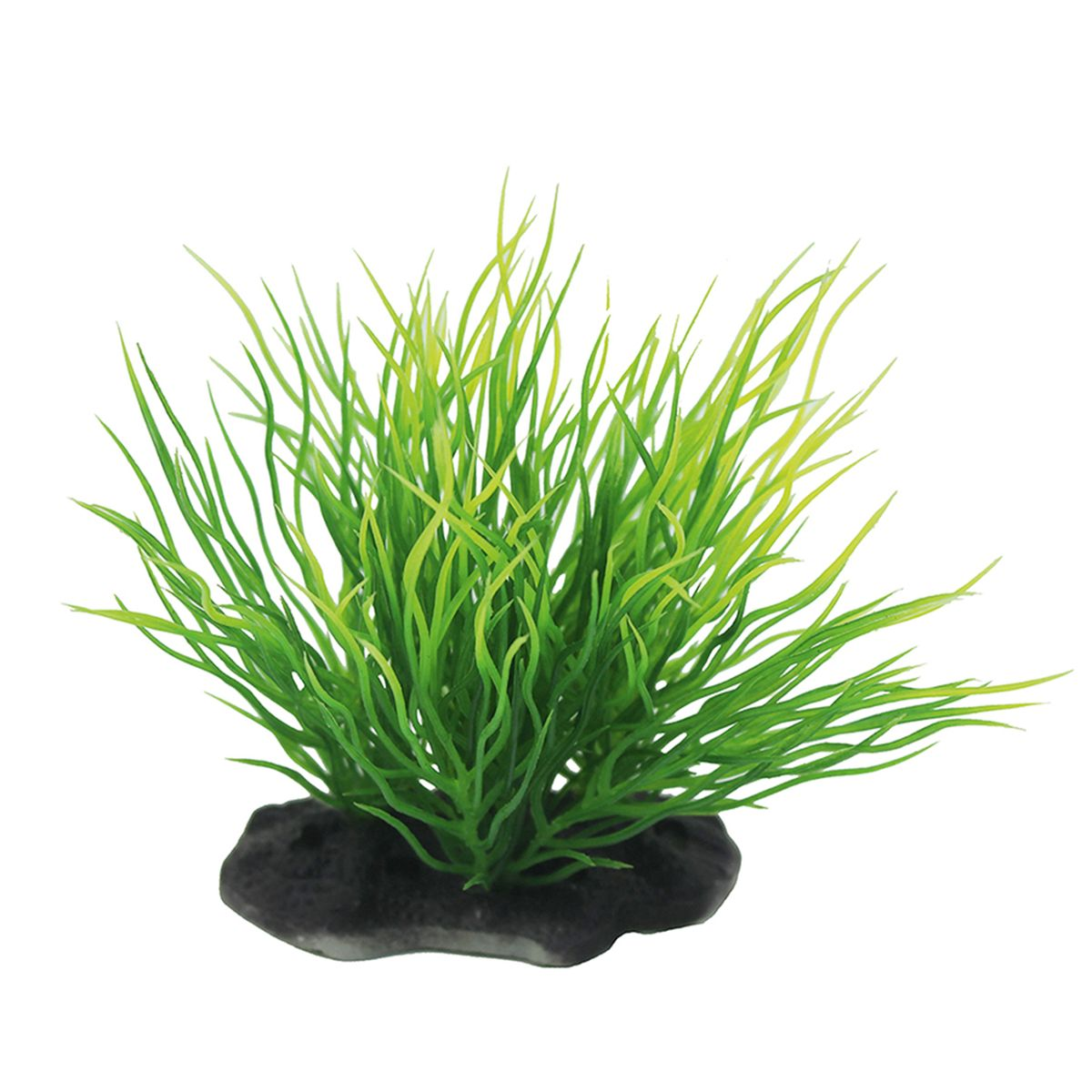 Растение для аквариума ArtUniq Пузырчатка, высота 10-12 см0120710Композиция из искусственных растений ArtUniq превосходно украсит и оживит аквариум.Растения - это важная часть любой композиции, они помогут вдохнуть жизнь в ландшафт любого аквариума или террариума. А их сходствос природными порадует даже самых взыскательных ценителей.