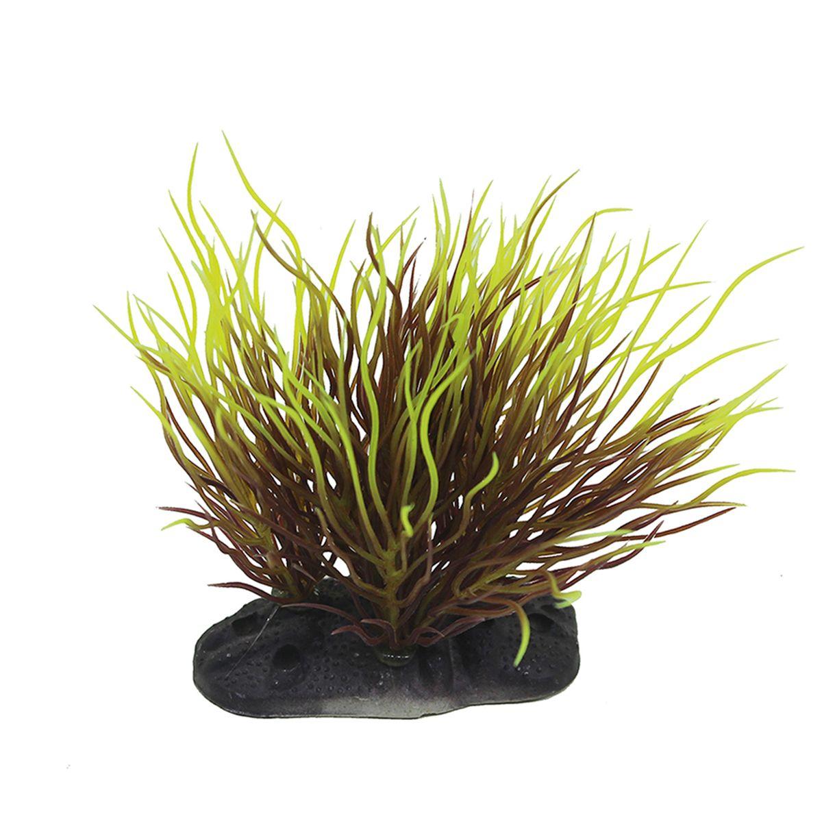 Растение для аквариума ArtUniq Пузырчатка красно-желтая, высота 10-12 см0120710Композиция из искусственных растений ArtUniq превосходно украсит и оживит аквариум.Растения - это важная часть любой композиции, они помогут вдохнуть жизнь в ландшафт любого аквариума или террариума. А их сходствос природными порадует даже самых взыскательных ценителей.