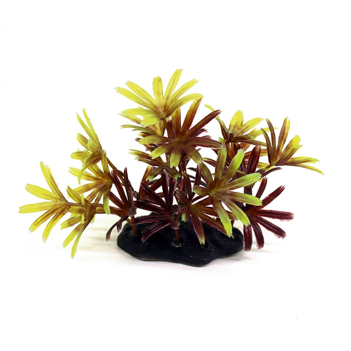 Растение для аквариума ArtUniq Бамбуза красно-желтая, высота 10-12 смART-1192118Композиция из искусственных растений ArtUniq превосходно украсит и оживит аквариум.Растения - это важная часть любой композиции, они помогут вдохнуть жизнь в ландшафт любого аквариума или террариума. А их сходствос природными порадует даже самых взыскательных ценителей.