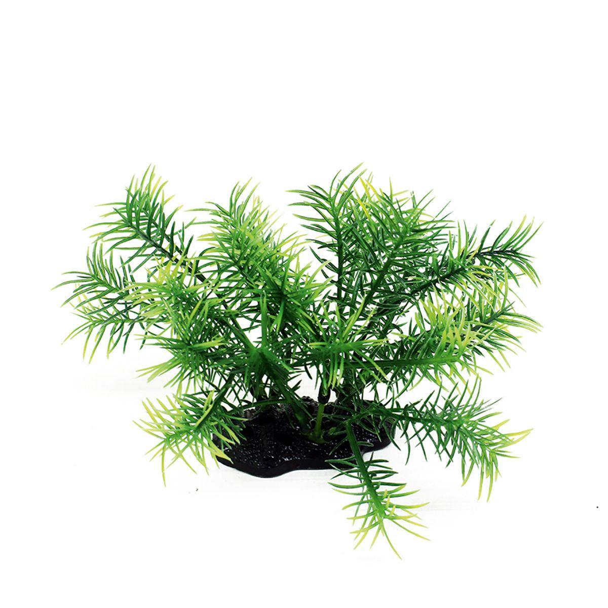 Растение для аквариума ArtUniq Погостемон Эректус, высота 10-12 см0120710Композиция из искусственных растений ArtUniq превосходно украсит и оживит аквариум.Растения - это важная часть любой композиции, они помогут вдохнуть жизнь в ландшафт любого аквариума или террариума. Лучше всего это сделают яркие и сочные цвета искусственных растений серии ArtPlants. А их сходствос природными порадует даже самых взыскательных ценителей.