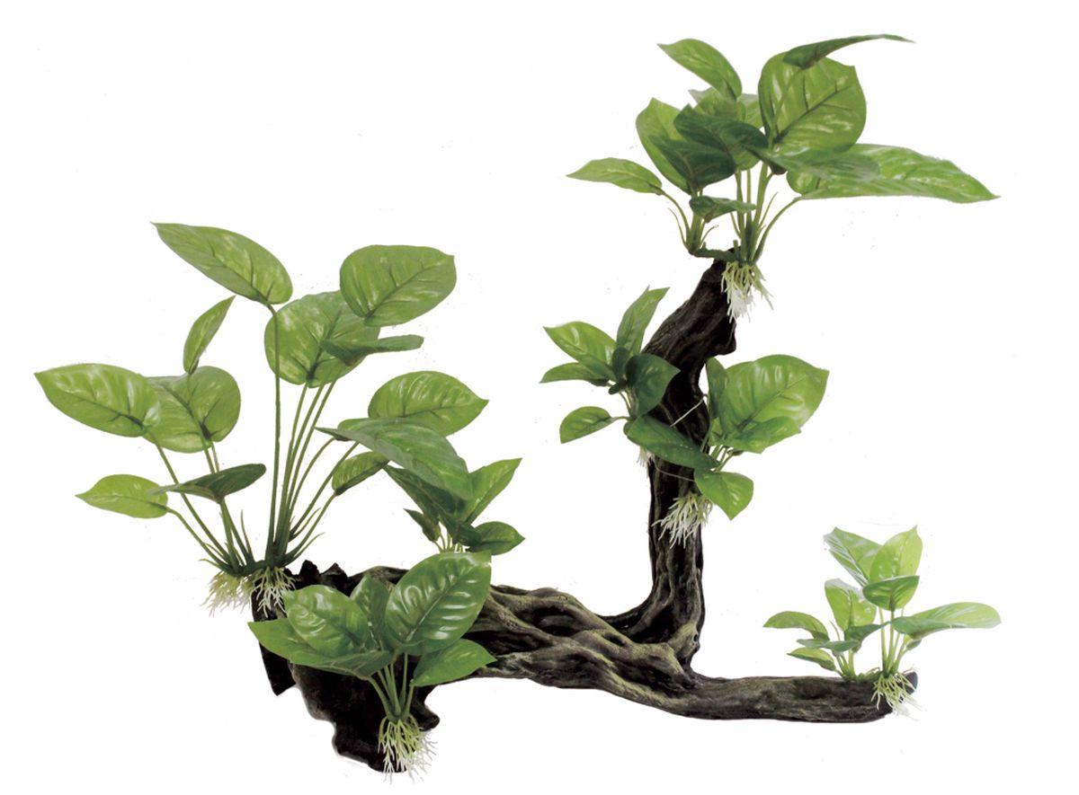Декорация для аквариума ArtUniq Ветвистая коряга с анубиасом, 44 x 15,5 x 38,5 см0120710Декорация ArtUniq – это яркая и важная часть любой композиции, она поможет вдохнуть жизнь в ландшафт любого аквариума или террариума. Декорация безопасна для обитателей аквариума, она не меняет параметры воды. Многие обитатели аквариума часто используют декорации как укрытия, в которых они живут и размножаются. Благодаря декорациям ArtUniq вы сможете создать прекрасный пейзаж на дне вашего аквариума или террариума.