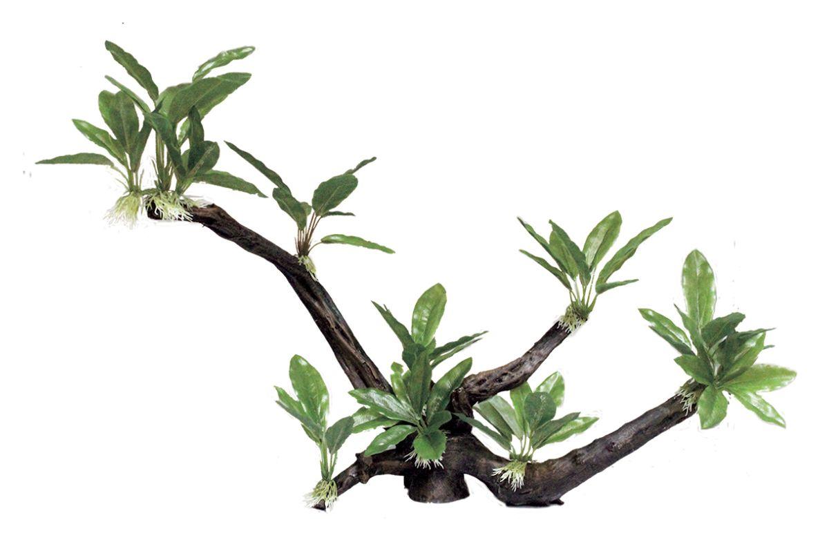 Декорация для аквариума ArtUniq Ветвистая коряга с анубиасом узколистным, 60,5 x 26 x 42 см12171996Декорация ArtUniq – это яркая и важная часть любой композиции, она поможет вдохнуть жизнь в ландшафт любого аквариума или террариума. Декорация безопасна для обитателей аквариума, она не меняет параметры воды. Многие обитатели аквариума часто используют декорации как укрытия, в которых они живут и размножаются. Благодаря декорациям ArtUniq вы сможете создать прекрасный пейзаж на дне вашего аквариума или террариума.