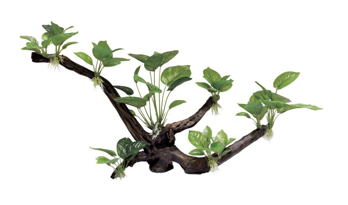 Декорация для аквариума ArtUniq Ветвистая коряга с анубиасом, 60,5 x 26 x 40 см0120710Декорация ArtUniq – это яркая и важная часть любой композиции, она поможет вдохнуть жизнь в ландшафт любого аквариума или террариума. Декорация безопасна для обитателей аквариума, она не меняет параметры воды. Многие обитатели аквариума часто используют декорации как укрытия, в которых они живут и размножаются. Благодаря декорациям ArtUniq вы сможете создать прекрасный пейзаж на дне вашего аквариума или террариума.