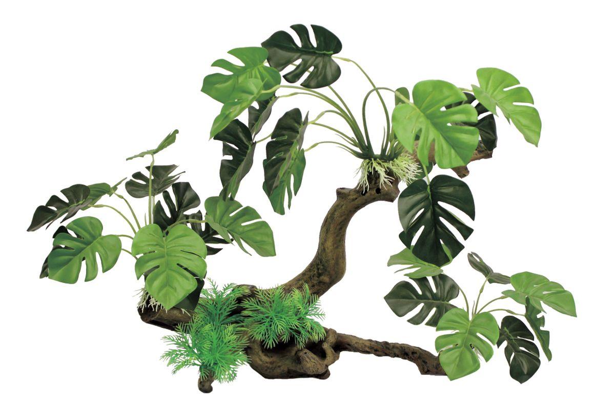 Декорация для аквариума ArtUniq Ветвистая коряга с монстерой, 41,5 x 14 x 36 см12171996Декорация ArtUniq – это яркая и важная часть любой композиции, она поможет вдохнуть жизнь в ландшафт любого аквариума или террариума. Декорация безопасна для обитателей аквариума, она не меняет параметры воды. Многие обитатели аквариума часто используют декорации как укрытия, в которых они живут и размножаются. Благодаря декорациям ArtUniq вы сможете создать прекрасный пейзаж на дне вашего аквариума или террариума.