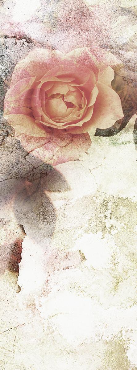 Фотообои Barton Wallpapers Цветы, 100 x 270 см. F1130112723Фотообои Barton Wallpapers позволят создать неповторимый облик помещения, в котором они размещены. Фотообои наносятся на стены тем же способом, что и обычные обои. Рельефная структура основы делает фотообои необычными, неповторимыми, глубокими и манящими.Фотообои снова вошли в нашу жизнь, став модным направлением декорирования интерьера. Выбрав правильную фактуру и сюжет изображения можно добиться невероятного эффекта живого присутствия.
