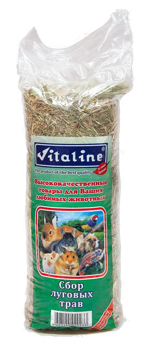 Сено для грызунов Vitaline, сбор луговых трав, 400 г0120710Сено для грызунов Vitaline - 100% натуральный продукт. Изготовлен из специально выращенных луговых трав в экологически чистых районах средней полосы России. Высокое качество данной продукции достигается с помощью нескольких стадий обработки сырья на специальном оборудовании.Гигиенический сертификат на упаковочный материал 77.01.04.229.П.06967.04.4 от 01.01.04.Хранение продукции:Хранить при температуре 20 градусов по Цельсию и относительной влажности не более 80%.Хранить в сухом месте.Срок годности не менее 3 лет (не ограничен).