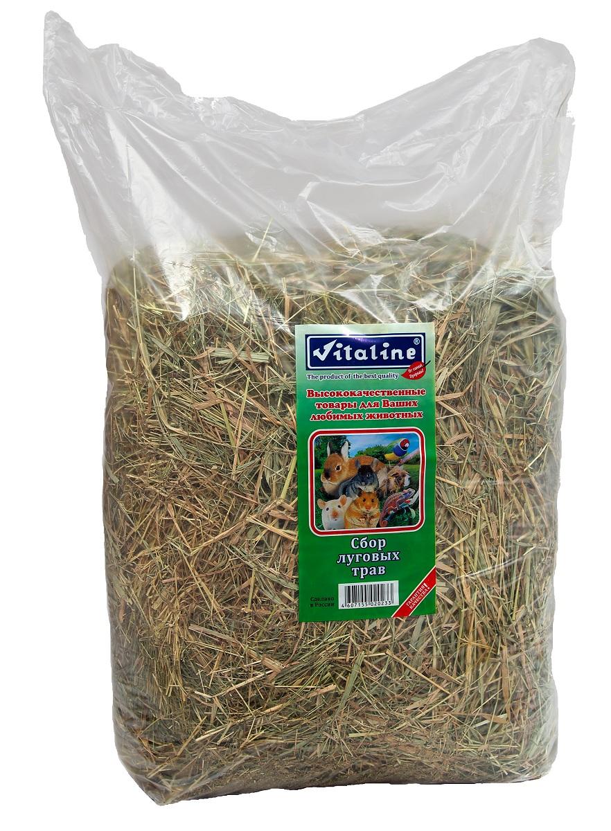 Сено для грызунов Vitaline, сбор луговых трав, 3 кг0120710Сено для грызунов Vitaline - 100% натуральный продукт. Изготовлен из специально выращенных луговых трав в экологически чистых районах средней полосы России. Высокое качество данной продукции достигается с помощью нескольких стадий обработки сырья на специальном оборудовании.Гигиенический сертификат на упаковочный материал 77.01.04.229.П.06967.04.4 от 01.01.04.Хранение продукции:Хранить при температуре 20 градусов по Цельсию и относительной влажности не более 80%.Хранить в сухом месте.Срок годности не менее 3 лет (не ограничен).