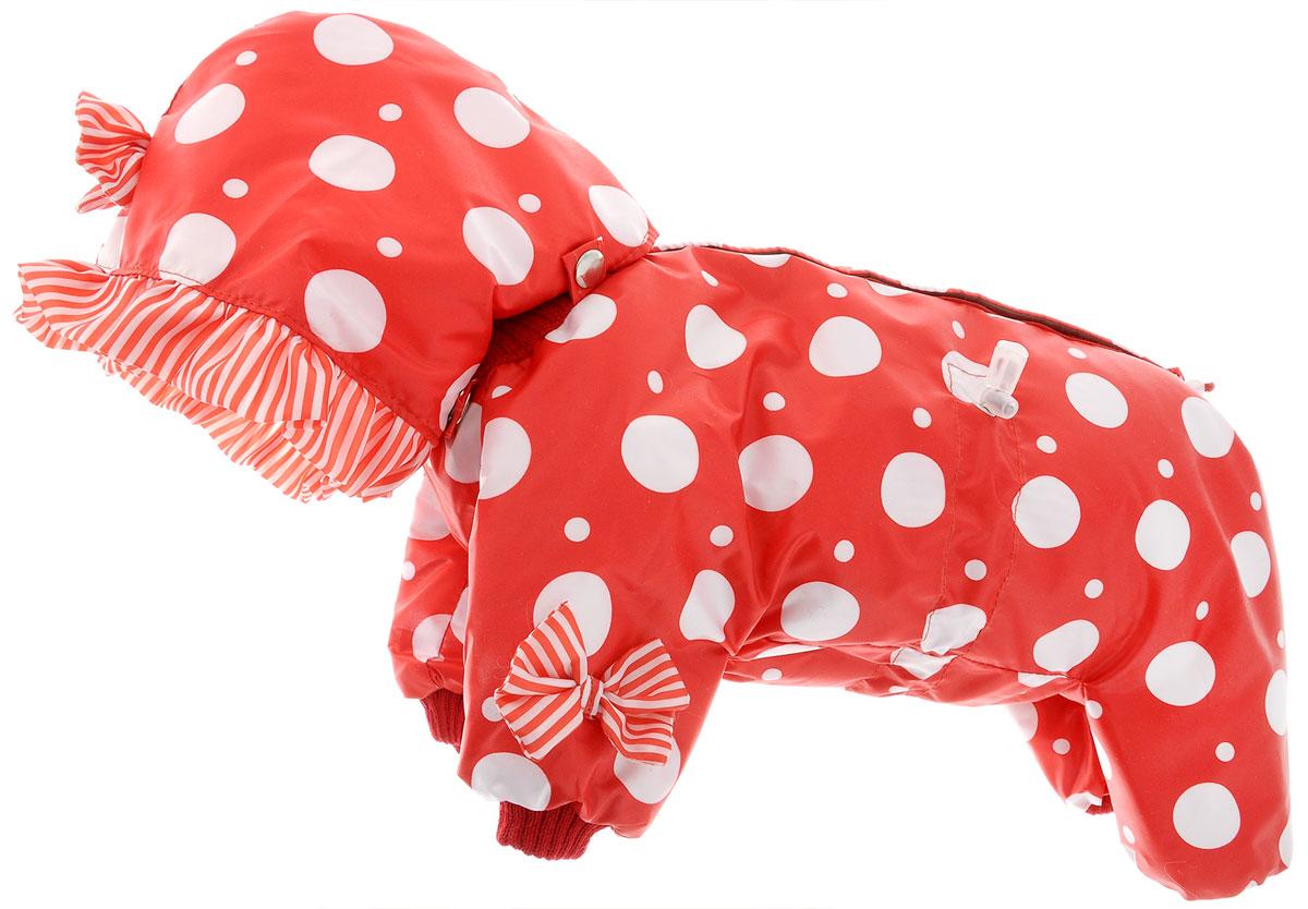 Комбинезон для собак Kuzer-Moda Мариска, утепелнный, для девочки, цвет: красный, белый. Размер SKZ001815Утепленный комбинезон для собак Kuzer-Moda Мариска, украшенный рюшами и забавными бантиками на передних лапках и капюшоне, отлично подойдет для прогулок в холодное время года. Комбинезон изготовлен из плащевки с утеплителем из синтепона, который сохранит тепло даже в сильные морозы. Комбинезон с капюшоном застегивается на кнопки и липучки, благодаря чему его легко надевать и снимать. Капюшон пристегивается при помощи кнопок. Низ рукавов и брючин оснащен трикотажными манжетами, которые мягко обхватывают лапки, не позволяя просачиваться холодному воздуху. На пояснице комбинезон затягивается на шнурок-кулиску.Благодаря такому комбинезону простуда не грозит вашему питомцу.Длина по спинке 28 см.