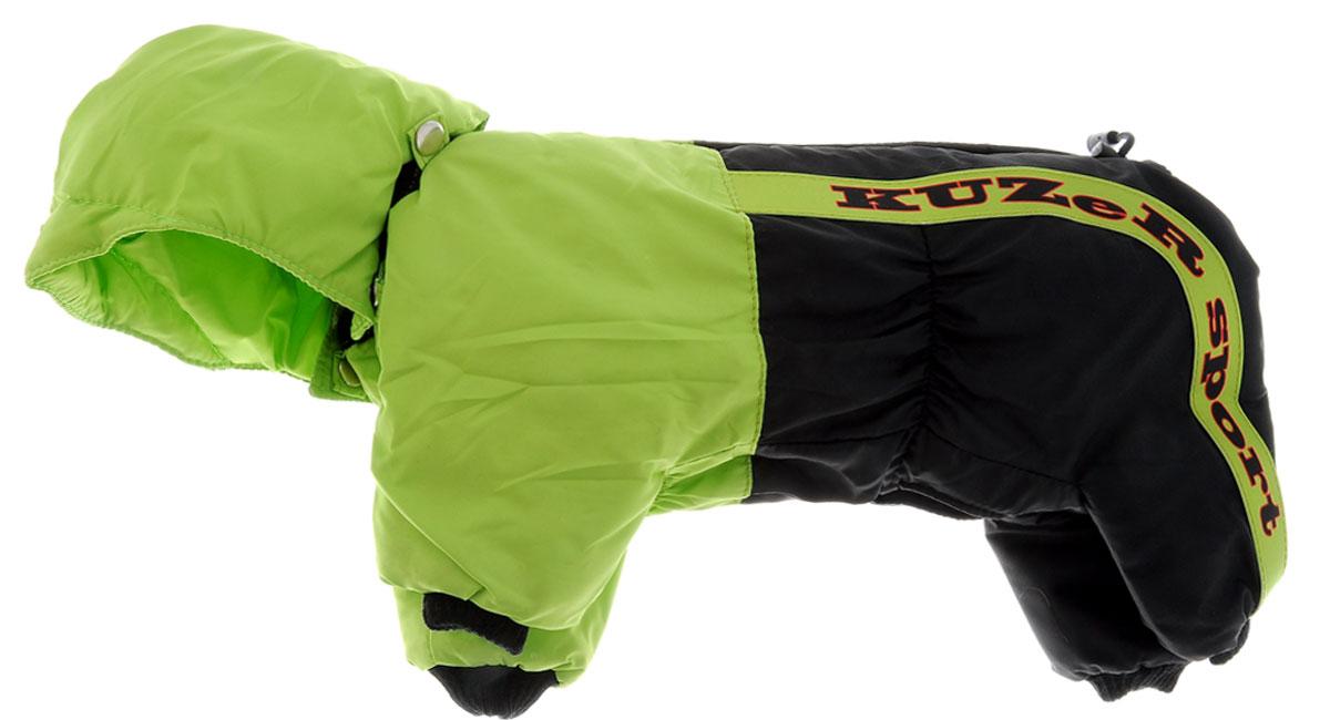 Комбинезон для собак Kuzer-Moda Пилот, утепленный, для мальчика, цвет: черный, салатовый. Размер S0120710Утепленный комбинезон для собак Kuzer-Moda Пилот, стилизованный под форму пилота-автогонщика, отлично подойдет для прогулок в холодное время года. Комбинезон изготовлен из плащевки, защищающей от ветра и снега, с утеплителем из синтепона, который сохранит тепло даже в сильные морозы. Комбинезон с капюшоном застегивается на кнопки, благодаря чему его легко надевать и снимать. Капюшон пристегивается при помощи кнопок. Низ рукавов и брючин оснащен трикотажными манжетами, которые мягко обхватывают лапки, не позволяя просачиваться холодному воздуху. На пояснице комбинезон затягивается на шнурок-кулиску.Благодаря такому комбинезону простуда не грозит вашему питомцу.Длина по спинке 28 см.