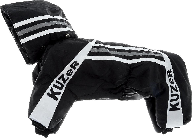 Комбинезон для собак Kuzer-Moda Игла, утепленный, для мальчика, цвет: черный, белый. Размер L0120710Комбинезон для собак Kuzer-Moda  Игла отлично подойдет для прогулок в прохладную погоду.Комбинезон изготовлен из прочной, ткани, которая сохранит тепло и обеспечит отличный воздухообмен. Комбинезон с капюшоном застегивается на кнопки, благодаря чему его легко надевать и снимать. Капюшон пристегивается при помощи кнопок. Ворот, низ рукавов и брючин оснащены трикотажными резинками, которые мягко обхватывают шею и лапки, не позволяя просачиваться холодному воздуху. Изделие снабжено светоотражающей лентой. На пояснице имеются затягивающиеся шнурки, которые также не позволяют проникнуть холодному воздуху.Благодаря такому комбинезону простуда не грозит вашему питомцу, и он не даст любимцу продрогнуть на прогулке.Длина по спинке 28 см.