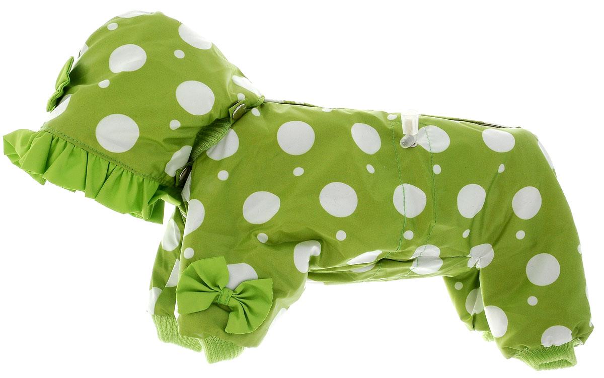 Комбинезон для собак Kuzer-Moda Мариска, утепленный, для девочки, цвет: зеленый, белый. Размер XS12171996Утепленный комбинезон для собак Kuzer-Moda Мариска, украшенный однотонными рюшами и забавными бантиками на передних лапках и капюшоне, отлично подойдет для прогулок в холодное время года. Комбинезон изготовлен из плащевки с утеплителем из синтепона, который сохранит тепло даже в сильные морозы. Комбинезон с капюшоном застегивается на кнопки и липучки, благодаря чему его легко надевать и снимать. Капюшон пристегивается при помощи кнопок. Низ рукавов и брючин оснащен трикотажными манжетами, которые мягко обхватывают лапки, не позволяя просачиваться холодному воздуху. На пояснице комбинезон затягивается на шнурок-кулиску.Благодаря такому комбинезону простуда не грозит вашему питомцу.Длина по спинке 28 см.