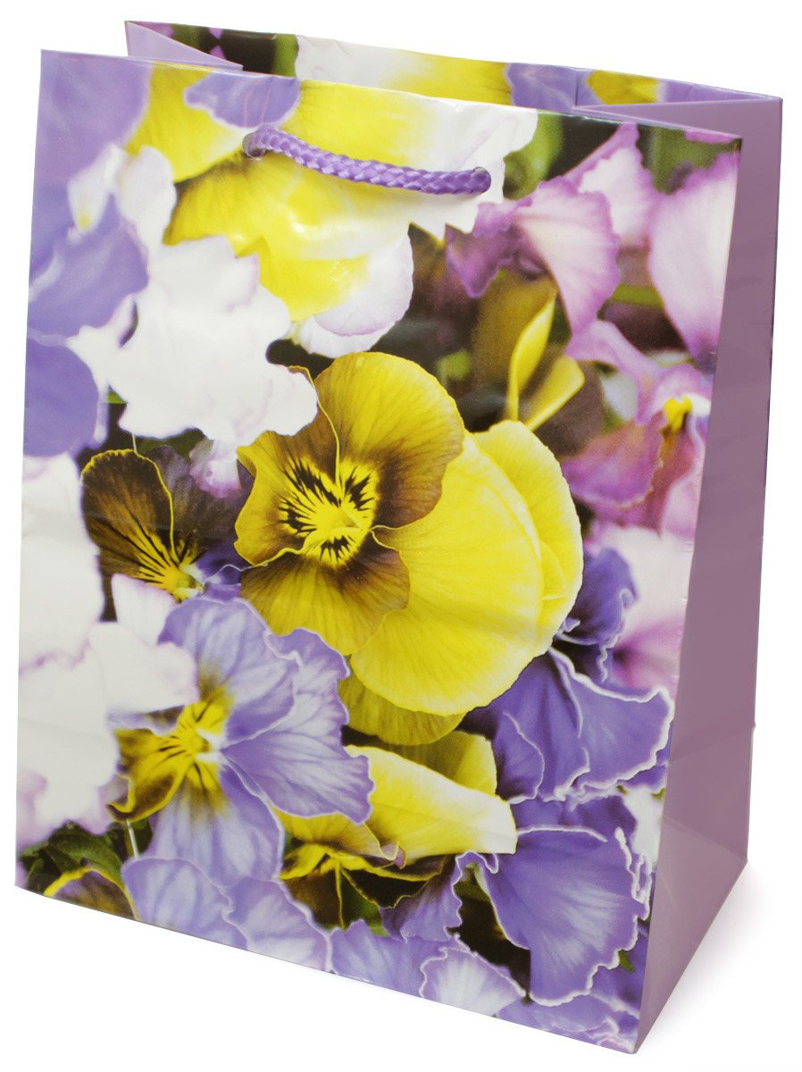 Пакет подарочный МегаМАГ Цветы, 18 х 22,7 х 10 см. H2. 2143 M3157 LПодарочный пакет МегаМАГ, изготовленный из плотной ламинированной бумаги, станет незаменимым дополнением к выбранному подарку. Для удобной переноски на пакете имеются ручки-шнурки.Подарок, преподнесенный в оригинальной упаковке, всегда будет самым эффектным и запоминающимся. Окружите близких людей вниманием и заботой, вручив презент в нарядном, праздничном оформлении.