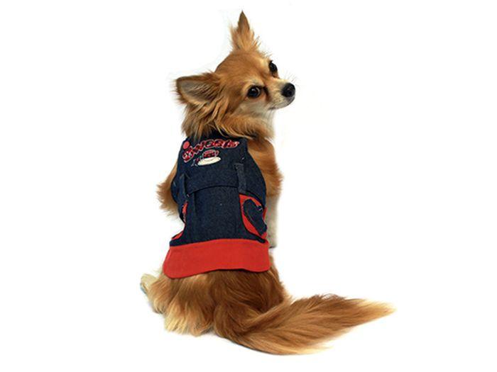 Сарафан для собак Каскад Сердечки, цвет: синий, красный. Размер XL0120710Стильный джинсовый сарафан для собак Каскад отлично подойдет для прогулок или для дома. Изделие не имеет рукавов, поэтому не ограничивает свободу движений, и собачка будет чувствовать себя в нем комфортно. Модель украшена надписями и нашивками в виде сердечек. Модный и удобный сарафан согреет вашего питомца во время прогулок и защитит от пыли и насекомых.Длина по спинке: 35 см.