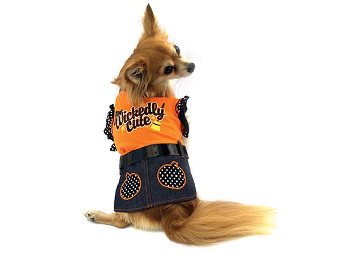 Платье для собак Каскад Halloween, цвет: оранжевый, черный. Размер M0120710Платье для собак Каскад отлично подойдет для прогулок в сухую погоду или для дома. Платье не имеет рукавов, поэтому не ограничивает свободу движений, и собачка будет чувствовать себя в нем комфортно. Спинка модели украшена надписями, проймы рукавов отделаны рюшами. Платье также дополнено лаковым поясом.Модное и удобное платье согреет вашего питомца во время прогулок и защитит от пыли и насекомых.Длина по спинке: 25 см.