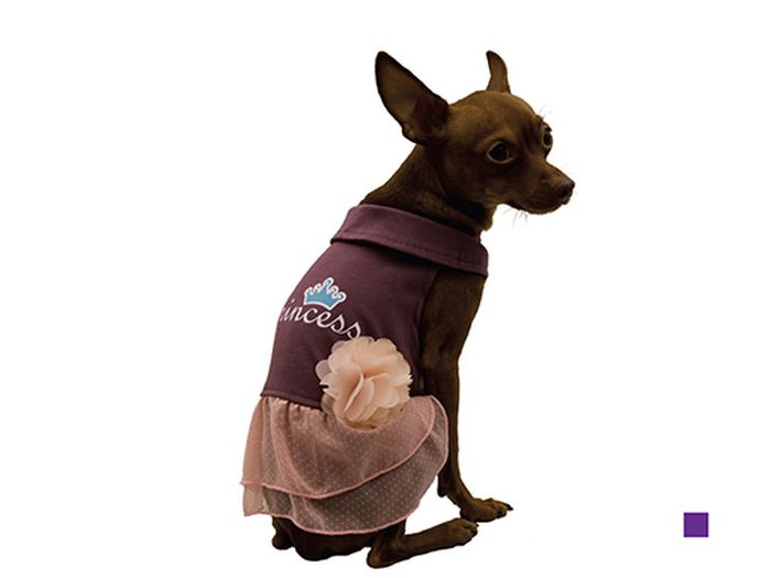 Сарафан для собак Каскад Princess, цвет: фиолетовый, бежевый. Размер LDM-160335Стильный сарафан для собак Каскад отлично подойдет для прогулок или для дома. Изделие не имеет рукавов, поэтому не ограничивает свободу движений, и собачка будет чувствовать себя в нем комфортно. Спинка модели украшена надписью Princess, низ дополнен легкой юбочкой. Цветочек придает изделию необычайный шарм. Модный и удобный сарафан согреет вашего питомца во время прогулок и защитит от пыли и насекомых.Длина по спинке: 30 см.