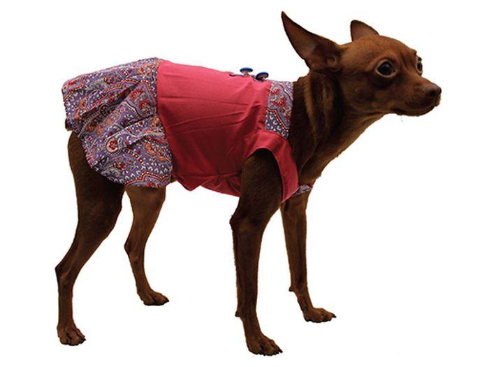 Сарафан для собак Каскад Восточный огурец, цвет: розовый, фиолетовый. Размер LDM-160101-3_синийСтильный сарафан для собак Каскад отлично подойдет для прогулок или для дома. Изделие не имеет рукавов, поэтому не ограничивает свободу движений, и собачка будет чувствовать себя в нем комфортно. Модель украшена принтом в восточном стиле и дополнена декоративными пуговицами. Модный и удобный сарафан согреет вашего питомца во время прогулок и защитит от пыли и насекомых.Длина по спинке: 30 см.