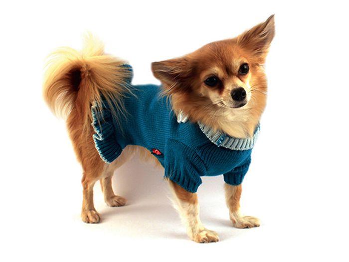 Платье для собак Каскад Цветок, вязаное, цвет: бирюзовый. Размер L0120710Вязаное платье для собак Каскад отлично подойдет для прогулок в прохладную погоду или для дома. Платье имеет короткие рукава свободного кроя, которые не ограничивает свободу движений, поэтому собачка будет чувствовать себя в нем комфортно. Манжеты рукавов и горловина выполнены эластичной вязкой, низ дополнен оборками. Вязаный цветочек придает платью необычайный шарм. Модное и удобное платье согреет вашего питомца во время прогулок и защитит от пыли и насекомых.Длина по спинке: 30 см.