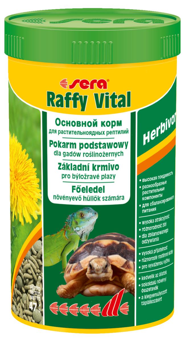 Корм для рептилий Sera Raffy Vital, 250 мл (47 г)0120710Корм для рептилий Sera Raffy Vital - это смешанный корм для сухопутных черепах и других растительноядных рептилий. Вкусная и богатая балластным веществом смесь из кормовых палочек и травяных таблеток оптимально удовлетворяет потребностям животных. Тщательно сбалансированное содержание витаминов и минералов укрепляет устойчивость к болезням и способствует здоровому росту костей и панциря. Инструкция по применению: Кормить экономно, ежедневно. Корм может подаваться в промежутках между кормлениями в сухом виде или увлажненный водой, а также его можно смешивать со свежим кормом (например, салат ромэн, одуванчик, крапива). Ингредиенты: кукурузный крахмал, пшеничная мука, растительное сырье, люцерна, рыбная мука, пшеничная клейковина, морские водоросли, крапива, пивные дрожжи, морковь, петрушка, спирулина, паприка, цельный яичный порошок, гаммарус, рыбий жир, сахар, шпинат, зеленые мидии, чеснок. Аналитический состав: протеин 18,1%, жиры 3,4%, клетчатка 9,3%, влажность 4,5%, зольные вещества 8,0%, кальций 1,5%, фосфор 0,6%.Витамины и провитамины: витамин A 24.000 МЕ/кг, витамин D3 1.200 МЕ/кг, витамин E (D, L-?-tocopheryl acetate) 48 мг/кг, витамин B1 24 мг/кг, витамин B2 72 мг/кг, витамин C (L-ascorbyl monophosphate) 440 мг/кг. Микроэлементы: Fe (E1) 25,0 мг/кг, Cu (E4) 1,3 мг/кг, Mn (E5) 1,3 мг/кг, Zn (E6) 24,9 мг/кг. Товар сертифицирован.