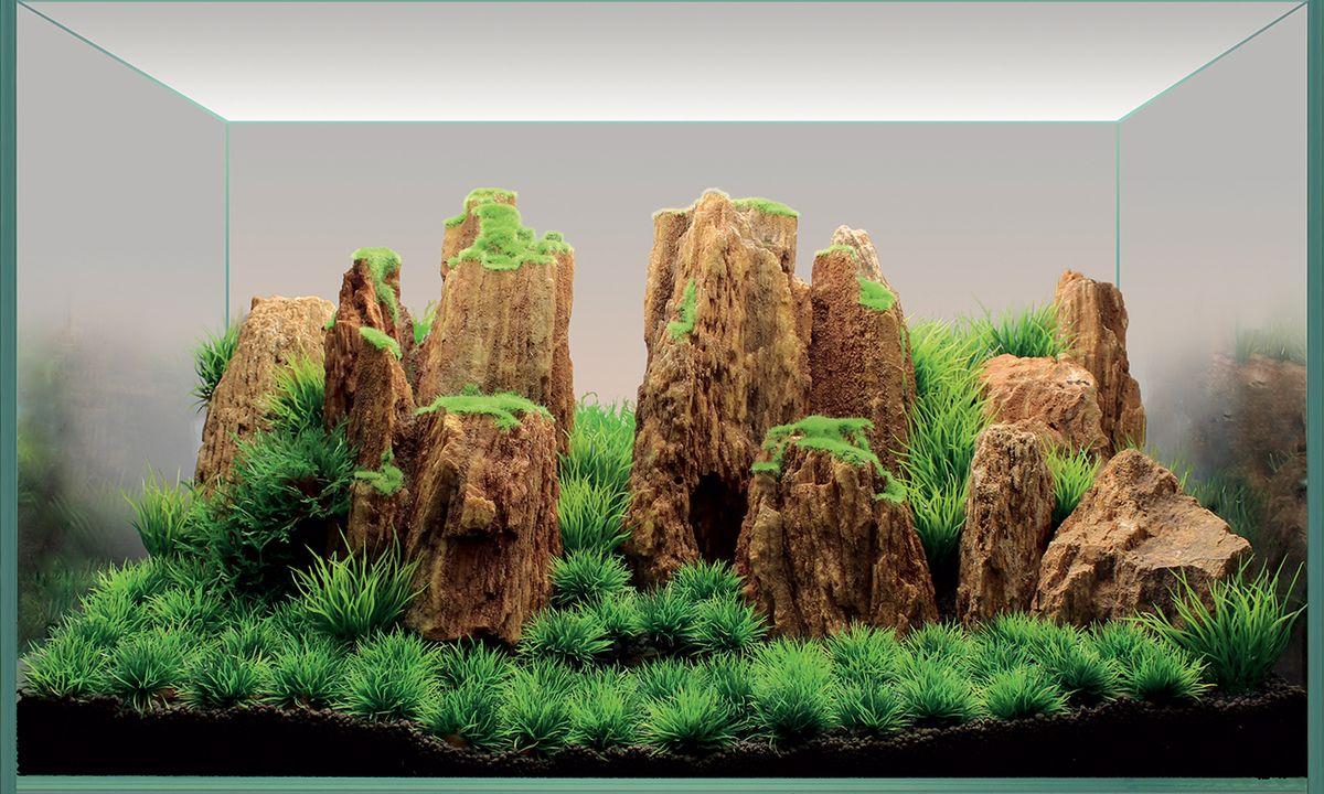 Набор декораций для аквариума ArtUniq Древние горы, 60 x 35 x 30 см5626070Набор декорация для аквариума ArtUniq Древние горы поможет вам создать из своего аквариума произведение искусства. Содержит около трех видов растений. Практичный элемент впишется в любой подводный пейзаж, превращая обычный аквариум в притягивающий внимание предмет интерьера. Каждый, кто увидит его, удивится резвящимся в нем рыбкам, которым больше никогда не будет скучно.Все компоненты этого украшения сделаны из химически нейтрального материала. Он не меняет состав и основные параметры воды, постоянно оставаясь безопасным для обитателей аквариума.Благодаря декорациям ArtUniq вы сможете смоделировать потрясающий пейзаж на дне вашего аквариума или террариума.Общий размер декорации (в собранном виде): 60 х 35 х 30 см.Высота растений: 3-12 см.