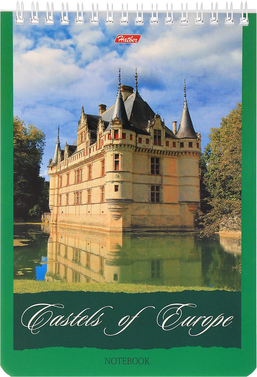 Hatber Блокнот Castles of Europe 60 листов в клетку 1040972523WDБлокнот Hatber Castles of Europe - незаменимый атрибут современного человека, необходимый для рабочих и повседневных записей в офисе и дома.Фронтальная часть обложки выполнена из картона и оформлена изображением замка. Тыльная часть обложки выполнена из плотного картона, что позволяет делать записи на весу. Внутренний блок состоит из 60 листов белой бумаги. Стандартная линовка в голубую клетку без полей. Листы блокнота соединены металлическим гребнем.