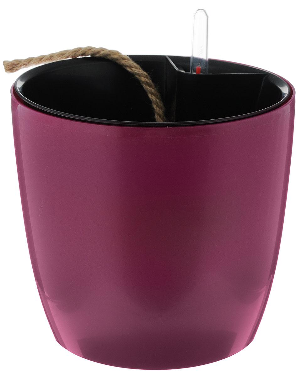 Горшок для цветов Техоснастка Комфорт, с автополивом, цвет: пурпурный, черный, 3,5 л2306634Горшок с автополивом Техоснастка Комфорт - настоящая находка для людей, которые любят живые растения, но в силу нехватки времени не могут обеспечить им своевременный полив. Изделие выполнено из высококачественного полипропилена.Система автополива работает по принципу капиллярного поднятия жидкости к корням растения. Устроен такой горшок следующим образом: в основной горшок устанавливается съёмный горшок, в котором находятся водовод и земельный субстрат, обеспечивающие доставку воды к корням, сбоку - поливочные отверстия и индикатор уровня воды. В первые недели после посадки растения в горшок вода поливается обычным способом, чтобы земля и корни напитались влагой. Она наливается во внешнюю часть горшка в поливочные отверстия и по фитилю поднимается вверх, увлажняя грунт, одного полива хватает примерно на 2-3 недели (это зависит от растения, времени года и климатических условий окружающей среды). Затем следят за индикацией уровня воды. Растение получает только то количество воды, которое ему необходимо в данный момент. Воду для полива отстаивать не нужно. Капиллярный автополив способствует насыщенному цвету листьев, обильному цветению и быстрому росту.Горшок состоит из нескольких комплектующих: индикатор уровня воды, фитиль-водовод, внутренний съемный горшок, внешний горшок. Диаметр горшка по верхнему краю: 18 см. Высота горшка (без учета индикатора воды): 17,5 см.