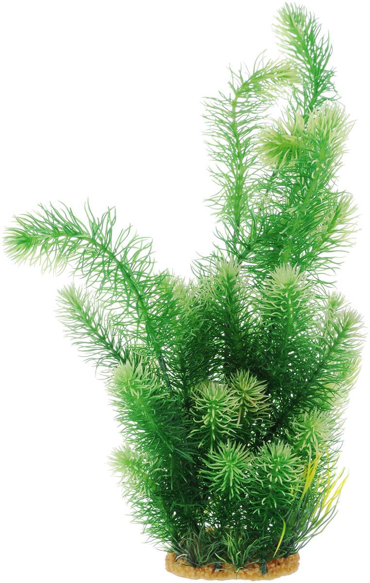 Растение для аквариума ArtUniq Погостемон эректус, высота 38 см0120710Декорация для аквариума ArtUniq Погостемон эректус, выполненная из высококачественного нетоксичного пластика, станет прекрасным украшением вашего аквариума. Декорация абсолютно безопасна, нейтральна к водному балансу, устойчива к истиранию краски, подходит как для пресноводного, так и для морского аквариума. Благодаря декорациям ArtUniq вы сможете смоделировать потрясающий пейзаж на дне вашего аквариума или террариума.