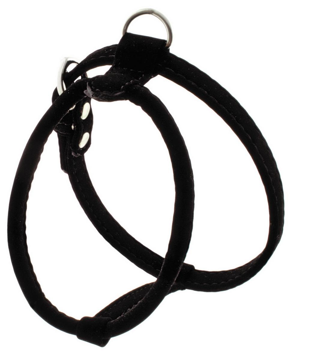Шлейка для собак Dezzie, цвет: черный, ширина 1,5 см, обхват шеи 30 см, обхват груди 33-38 см. Размер M. 562400807063Шлейка Dezzie изготовлена из бархата и подходит для собак мелких пород. Крепкие металлические элементы делают ее надежной и долговечной. Шлейка - это альтернатива ошейнику. Правильно подобранная шлейка не стесняет движения питомца, не натирает кожу, поэтому животное чувствует себя в ней уверенно и комфортно. Изделие отличается высоким качеством, удобством и универсальностью. Имеется металлическое кольцо для крепления поводка. Размер регулируется при помощи пряжек.Ширина шлейки: 1,5 см. Обхват шеи 30 см. Обхват груди: 33-38 см.