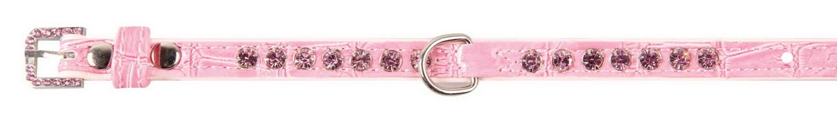 Ошейник для собак Dezzie, цвет: розовый, обхват шеи 23-28 см, ширина 1 см. Размер S. 56243000120710Ошейник для собак Dezzie изготовлен из искусственной кожи и декорирован теснением под рептилию и стразами. Он устойчив к влажности и перепадам температур. Клеевой слой, сверхпрочные нити и крепкие металлические элементы делают ошейник надежным и долговечным.Размер ошейника регулируется при помощи пряжки. Имеется металлическое кольцо для крепления поводка. Изделие отличается высоким качеством, удобством и универсальностью, а также имеет эффектный внешний вид. Минимальный обхват шеи: 23 см. Максимальный обхват шеи: 28 см. Ширина ошейника: 1 см.