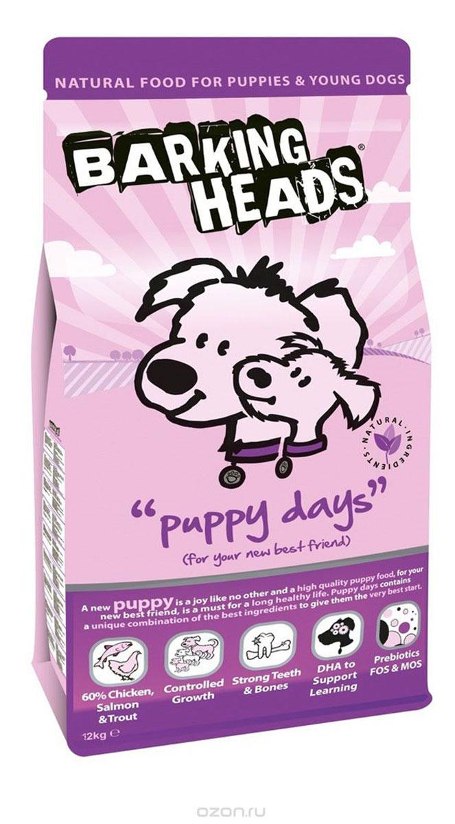 Корм сухой Barking Heads Puppy Days для щенков, с курицей, лососем и рисом, 6 кг0120710Полноценный корм Barking Heads Puppy Days предназначен для щенков и молодых собак. Этот восхитительный корм для щенков призван помочь вашему любимцу расти с каждым днем. Щенки нуждаются в пище намного больше, чем взрослые собаки, а для нормального физического развития им требуется особая диета. Корм Puppy Days содержит уникальное сочетание тщательно отобранных ингредиентов, чтобы начальный этап жизни вашего щенка был наилучшим.Состав: свежеприготовленная курица 22%, сушеное куриное мясо 18%, коричневый рис, сладкий картофель, белый рис, свежеприготовленный лосось 8%, свежеприготовленная форель 5%, сухой яичный продукт, куриный жир, 3%, куриный бульон 2,5%, люцерна, лососевый жир 1,5%, морские водоросли, сушеный томат, сушеная морковь, пребиотик МОС (моно-олигосахариды), пребиотик ФОС (фруктоолигосахариды).Гарантированный анализ (%): белок 27%, содержание жира 17%, клетчатка 2,2%, зола 6,75%, влага 8%, кальций 1,2%, фосфор 1%, Омега-6 2,2%, Омега-3 1,3%, докозагексаеновая кислота 0,3%.Витамины (на кг): витамин А 25000 МЕ, витамин D3 2222 МЕ, витамин Е 694 МЕ.Комплекс микроэлементов (на кг): моногидрат сульфата железа 956 мг, моногидрат сульфата цинка 772 мг, моногидрат сульфата марганца 152 мг, пентагидрат сульфата меди 56 мг, безводный йодат кальция 6,80 мг, селенит натрия 0,77 мг.Товар сертифицирован.