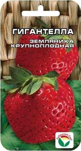 Семена Сибирский сад Клубника. ГигантеллаBH-SI0439-WWОсобо крупный сорт земляники, плоды весом 50-60гр, темно-бордовые, вкусные. Куст крупный раскидистый.