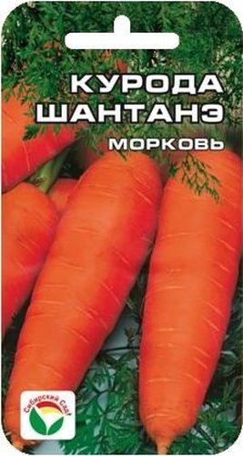 Семена Сибирский сад Морковь. Курода Шантанэ, 1 г13Отличный среднеранний сорт. От всходов до технической спелости 105 дней. Корнеплоды крупные, слегка конической формы, длиной 20 см, весом около 250 грамм, гладкие, насыщенного оранжево-красного цвета, с маленькой сердцевиной. Мякоть сочная, очень сладкая. Сорт хорошо растет даже на тяжелых грунтах. Рекомендуется для потреблении в свежем виде, переработки, хранения. Семена не требуют замачивания. Высевают в грунт на глубину 1-1,5 см рано весной или под зиму, с междурядьями 25 см и расстоянием между растениями в рядке 3-4 см. Требует своевременного прореживания в начальный период роста или равномерного изначального посева, обеспечивающего формирование 30-40 шт. растений на 1 погонный метр. Урожайность 6-8 кг с 1 м2. Для ускорения процесса всхожести семян, оздоровления растений, улучшения завязываемости плодов рекомендуется пользоваться специально разработанными стимуляторами роста и развития растений.