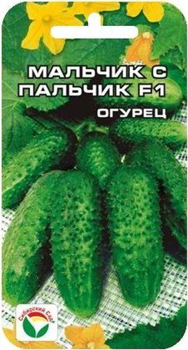 Семена Сибирский сад Огурец. Мальчик с пальчик, 7 шт10503Очень скороспелый партенокарпический пучковый гибрид корнишонного типа. Предназначен для посадки в теплицах и открытом грунте. Выделяется обилием зеленцов на плетях, массированной отдачей урожая. Ветвление среднее, в узлах формируется до 5-6 завязей. Зеленцы бугорчатые, белошипые, ярко- зеленые. длиной 8-10 см. Засолочные и вкусовые качества высокие. Растения светолюбивые, вступают в плодоношение на 37-38 день от всходов. Гибрид устойчив к мучнистой росе, оливковой пятнистости, вирусу огуречной мозаики. Толерантен к ложной мучнистой росе.Посев на глубину 1,5-2 см. Оптимальная температура почвы для прорастания семян 23-25°С. Плотность посадки 3 растения на 1 м2. Растение укрывают пленкой, подвязывают к шпалере. Полив и подкормка органическими и минеральными удобрениями в процессе вегетации. Сбор урожая через каждые 3-5 дней.Для ускорения процесса всхожести семян, оздоровления растений, улучшения завязываемости плодов рекомендуется пользоваться специально разработанными стимуляторами роста и развития растений.