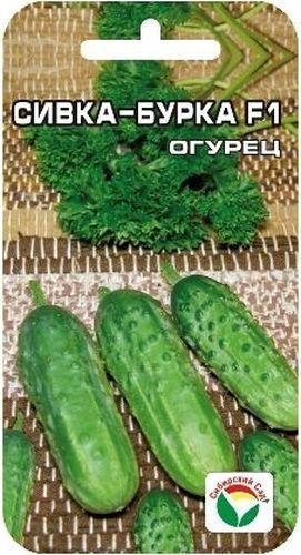 Семена Сибирский сад Огурец. Сивка-Бурка F1S03301004Раннеспелый (43-45 дней) партенокарпик, зеленцы длиной 9-11см, черношипые. Идеально подходят для засолки.