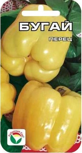 Семена Сибирский сад Перец. Бугай, 10 штBP-00000331Новый крупный раннеспелый сорт. Плоды впечатляют гигантскими размерами и радуют глаз благородством цвета и формы. Куст крепкий, высотой 50-60 см. Плоды кубовидной формы, толстостенные (до 10 мм), массой до 500 г, светящейся мягко-желтой окраски с жемчужным отливом, нежно-пряного вкуса, долго сохраняют внешний вид и блеск. Сорт универсального назначения. Пригоден для выращивания в теплицах и в открытом грунте. Посев на рассаду производят за 60-70 дней до высадки растений на постоянное место. Оптимальная постоянная температура прорастания семян 26-28°С. При высадке в грунт на 1 м2 размещают до 5-6 растений. Сорт хорошо реагирует на полив и подкормки комплексными минеральными удобрениями. Для ускорения процесса всхожести семян, оздоровления растений, улучшения завязываемости плодов рекомендуется использовать специально разработанные стимуляторы роста и развития растений.