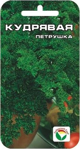 Семена Сибирский сад Петрушка. Кудрявая, 1 г10503Петрушка имеет привлекательный декоративный вид, обладает приятным ароматом. Период от всходов до технической спелости 70-80 дней. После срезки зелень длительное время сохраняет свежесть. Отличается холодостойкостью, хорошо зимует и рано дает свежую зелень весной. Используют в свежем и сушеном виде как душистую и высоковитаминную приправу в кулинарии.Для ускорения процесса всхожести семян, оздоровления растений, улучшения завязываемости плодов рекомендуется использовать специально разработанные стимуляторы роста и развития растений.