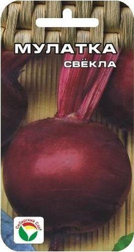 Семена Сибирский сад Свекла. Мулатка, 2 гK100Среднеспелый высокоурожайный сорт (от всходов до уборки корнеплодов 125-130 дней). Формирует темно-красные гладкие корнеплоды округлой формы, массой 160-360 г. Мякоть сочная, вкусная, нежная, без кольцеватости. Выращивается повсеместно. Отличается высокой лежкоспособностью при зимнем хранении. Семена высевают в грунт в мае на глубину 2-4 см в рядки с междурядьями 25-30 см и расстоянием между семенами 8-10 см.Вес: 2 г.
