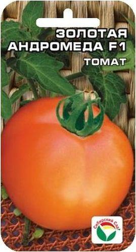 Семена Сибирский сад Томат. Золотая Андромеда, 15 шт106-026Раннеспелый холодостойкий гибрид для получения ранних урожаев в открытом грунте и пленочных теплицах. Созревание плодов на 105-107 день после появления всходов. Растение детерминантное, высотой до 80 см. Соцветие простое, с 5-7 плодами, первое закладывается над 5-м листом. Плоды округлые, золотисто-оранжевые, выровненные, массой до 130 г, очень вкусные, с большим количеством витаминов. Товарность и транспортабельность высокие. Урожайность в открытом грунте 6-7 кг с 1 м2, в пленочных теплицах 9-11,7 кг с 1 м2. При высадке в грунт на 1 м2 размещают 3 растения. Выращивается в 1-2 стебля с подвязкой и пасынкованием.