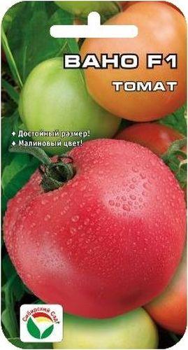 Семена Сибирский сад Томат. Вано, 15 шт106-026Ранний гибрид с крупными красивыми малиновыми плодами отличных вкусовых и товарных качеств. Период от всходов до созревания 100-105 дней. Растение среднеоблиственное, детерминантного типа, вы сотой 110-130 см. Первая кисть закладывается рано, над 5-6 листом, последующие через 1-2 листа. В кисти 5-6 округлых тяжеловесных плодов массой 250-300 г интенсивно-малиновой окраски. Томаты вкусные, плотные, но не жесткие, с хорошей транспортабельностью и способностью к дозреванию без потери товарных качеств. Выход стандартных плодов 99%, урожайность за первых 2 сбора 8,7 кг/м2, потенциальная урожайность до 20 кг/м2. Гибрид устойчив к альтернаирозу и вирусу табачной мозаики. Рекомендуется для выращивания в открытом и защищенном грунте. Посев на рассаду производят за 50-60 дней до высадки растений на постоянное место.При высадке в грунт на 1 м2 размещают 3 растения. Гибрид отзывчив на внесение удобрений и технологию возделывания. Выращивается в 1-2 стебля с подвязкой и пасынкованием. Для ускорения процесса всхожести семян, оздоровления растений, улучшения завязываемости плодов рекомендуется пользоваться специально разработанными стимуляторами роста и развития растений.