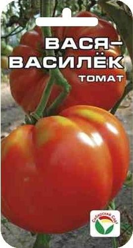 Семена Сибирский сад Томат. Вася-Василек, 20 штNN-609-SW-YВ этом новом сорте удачно сочетаются такие достоинства, как крупноплодность (150-200 г), высокая урожайность (8-9 кг с 1 м2), прекрасные вкусовые качества зрелых плодов с высоким содержанием сахаров и сухого вещества. Плоды плоскоокруглые, красные, глянцевые, имеют товарный вид. Томаты плотные, но мякоть очень нежная, сочная. Хороши как в салатах, так и в консервации. Сорт очень терпим к экстремальным погодным условиям, не требует большого ухода и дает прекрасные результаты в открытом грунте.Посев на рассаду производят за 50-60 дней до высадки растений на постоянное место. Оптимальная постоянная температура прорастания семян 23-25°С. При высадке в грунт на 1 м2 размещают 5 растений. Сорт хорошо реагирует на полив и подкормки комплексными минеральными удобрениями.Для ускорения процесса всхожести семян, оздоровления растений, улучшения завязываемости плодов рекомендуется пользоваться специально разработанными стимуляторами роста и развития растений.