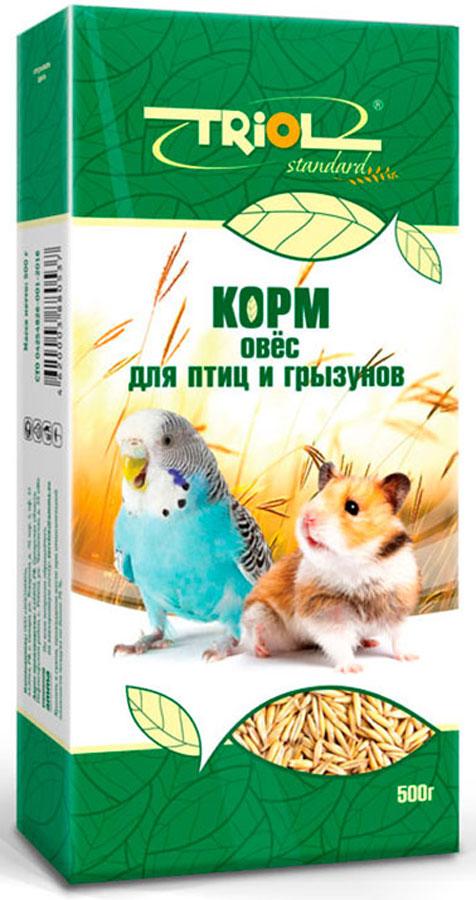 Корм Тriol Standard для птиц и грызунов, 500 г0120710Овес - идеален для здорового питания птиц и грызунов. Такой корм обогащен витаминами, необходимыми для правильного развития пернатых питомцев и мелких домашних животных. Основной корм для грызунов и птиц из овса - это сбалансированное питание для домашних любимцев, разработанное компанией Triol для максимального обеспечения питомца полезными микроэлементами. Данный продукт состоит из исключительно натурального овса богатого на растительный белок, специальных аминокислот и микроэлементы, благодаря чему отлично подойдет для всех видов домашних грызунов и птиц. Данный продукт поможет обеспечит вашего любимца необходимым количеством питательных веществ для обеспечения здоровья - натуральным растительным лизином, витамином В и метионином. Кроме того корм предоставлен в сухом виде, в котором его предпочитают потреблять крупные попугаи и грызуны, однако его можно размочить для подачи другим птицам. Продукт поддается смешиванию с другими кормами и добавками, что поможет вам найти идеальный кормовой баланс для вашего любимца. Позаботьтесь о здоровом будущем своего грызуна или птички с качественными и вкусными кормами от компании Triol!