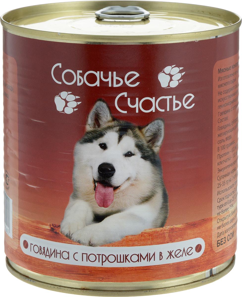 Консервы для собак Собачье Счастье, говядина с потрошками в желе, 750 г0120710Мясные консервы для кошек Собачье Счастье изготовлены из натурального российского мясного сырья. Не содержат сои, ароматизаторов, искусственных красителей, генномодифицированных ингредиентов. Корм полностью удовлетворяет ежедневные энергетические потребности животного и обеспечивает оптимальное функционирование пищеварительной системы.Товар сертифицирован.