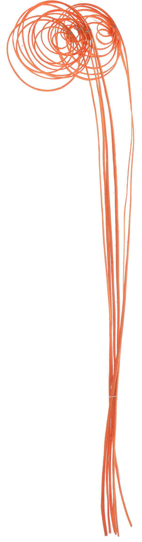 Украшение декоративное Lovemark Завиток. Спираль, цвет: оранжевый, 6 штK100Украшение декоративное Lovemark Завиток. Спираль - великолепный подарок себе и вашим близким. Этот очаровательный предмет интерьера будет приковывать взгляды ваших гостей.Изделия из соломки несут в себе энергию солнечных лучей. Несмотря на свой хрупкий вид, солома - прочный и долговечный материал, а значит не помнется и не поломается со временем. Рекомендации по уходу: изделие должно находиться в сухом помещении.