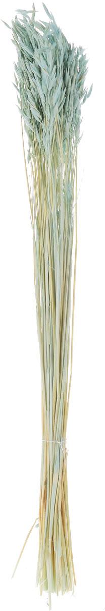 Украшение декоративное Lovemark Пучок овса, цвет: голубой, длина 70 смPM-45-7Украшение декоративное Lovemark Пучок овса - великолепный подарок себе и вашим близким. Этот очаровательный предмет интерьера будет приковывать взгляды ваших гостей.Изделия из соломы несут в себе энергию солнечных лучей. Несмотря на свой хрупкий вид, cолома - прочный и долговечный материал, а значит не помнется и не поломается со временем. Рекомендации по уходу: изделие должно находиться в сухом помещении.