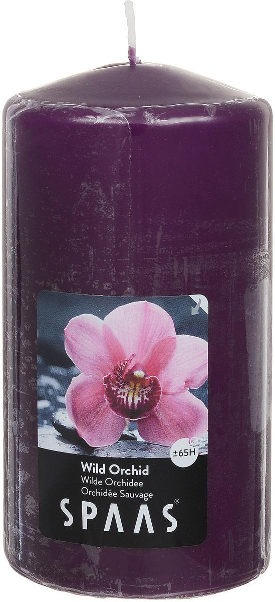 Свеча ароматизированная Spaas Дикая орхидея, высота 15 смFS-91909Ароматизированная свеча Spaas Дикая орхидея изготовлена из парафина с добавлением натуральных красок и ароматизаторов, не выделяющих вредные вещества при горении. Фитиль выполнен из натурального хлопка. Оригинальная свеча с тонким, нежным ароматом добавит романтики в ваш дом и создаст неповторимую атмосферу уюта, тепла и нежности. Такая свеча не только поможет дополнить интерьер вашей комнаты, но и станет отличным подарком. Время горения: 70 ч.