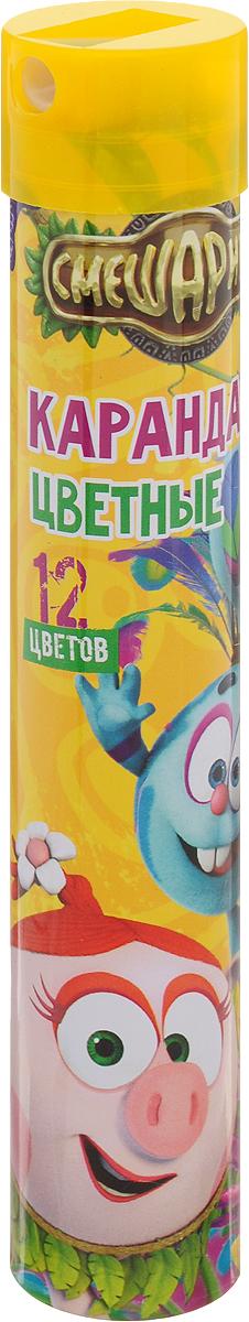 Centrum Набор цветных карандашей Смешарики 12 штC13S041944Цветные карандаши Centrum Смешарики обязательно понравятся вашему юному художнику. Набор включает в себя 12 карандашей с шестигранным корпусом. Они идеально подходят для школы и дома.Карандаши помещены в металлическую тубу с крышкой-точилкой.Такой набор карандашей откроет юным художникам новые горизонты для творчества, поможет отлично развить мелкую моторику рук, цветовое восприятие, фантазию и воображение.Не рекомендуется детям до 3-х лет!